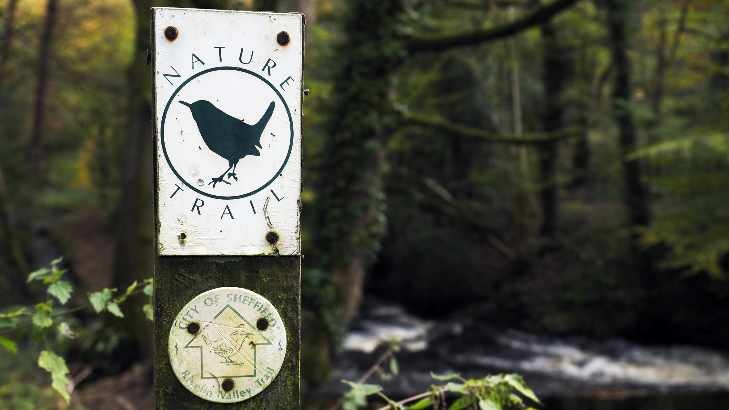 Rivelin Valley Nature Trail sign